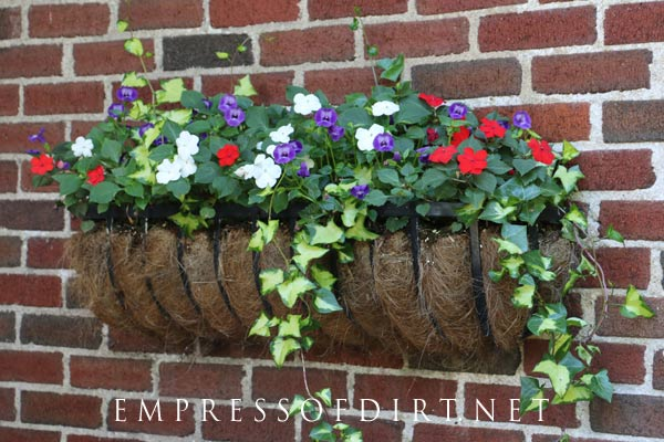 Pick your favourite flower colours, add ivy, and you've got a good-looking hayrack planter.