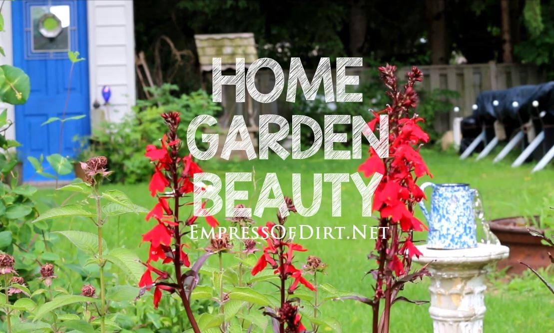 Home Garden Beauty Video