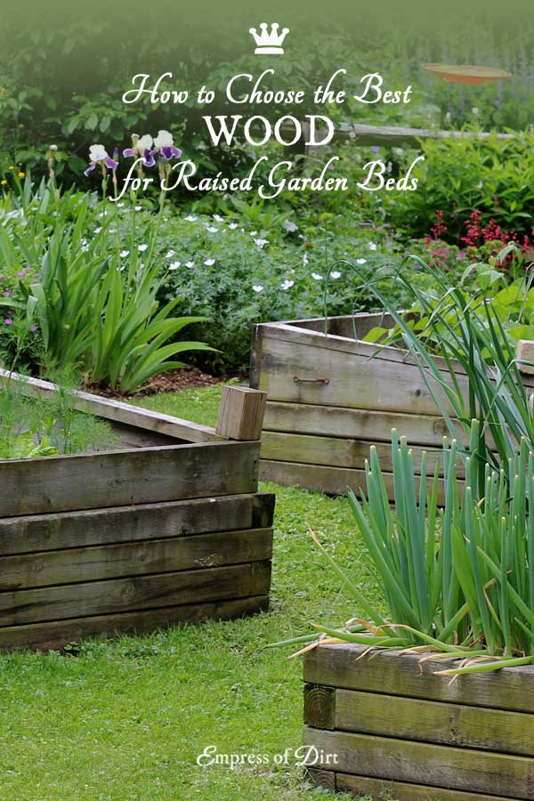 Best Wood to use for Raised Garden Beds Empress of Dirt
