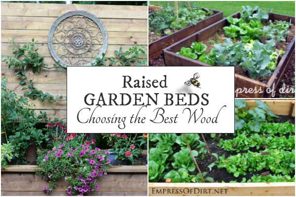 Best Wood for Raised Garden Beds | Empress of Dirt