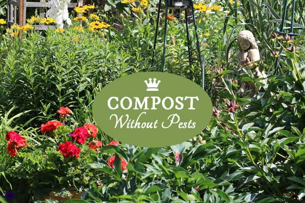 We all know composting is good for the garden and the environment, but sometimes compost bins can also attract rats or other wildlife. If you want to save your kitchen scraps (fruits, vegetables, egg shells, coffee grounds, and more) but have this concern, you may like this solution.