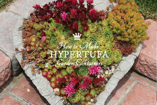 How to Make Hypertufa Garden Containers