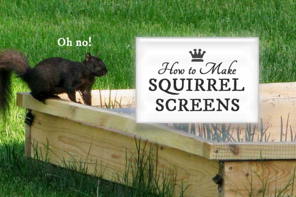 How to Make Squirrel Screens for Raised Garden Beds