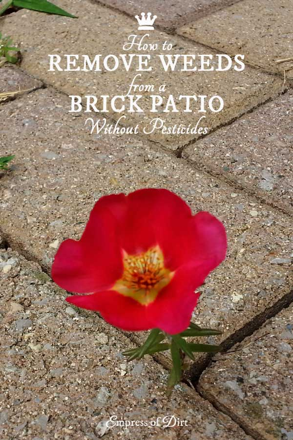How to Remove Weeds from a Brick Pathway without Pesticides