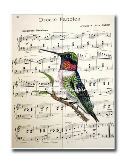 Hand-painted watercolor hummingbird by Barb Rosen