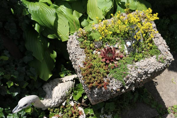Hypertufa fairy garden