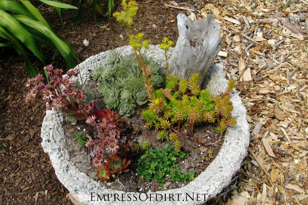 Make your own creative garden pots! Hypertufa is made from a combination of cement and natural fillers to create rustic, lightweight garden pots, troughs, planters, and other projects including sculptures. I'll give you the basics to get started plus some good resources for various DIY tutorials.