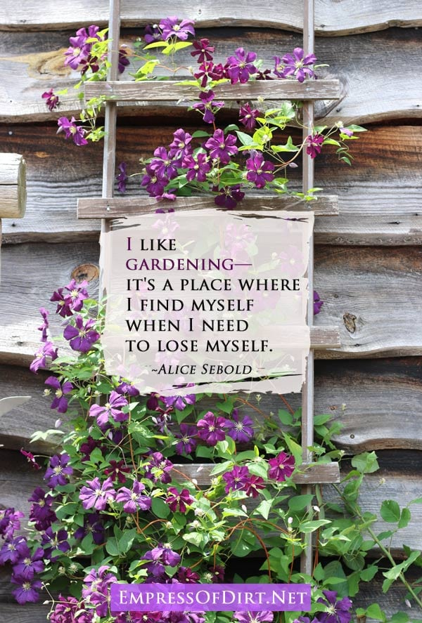 I like gardening—it's a place where I find myself when I need to lose myself. ~Alice Sebold