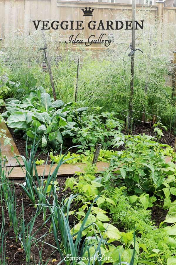 Vegetable Garden Border Ideas garden bed edging ideas ad 4 20 Ideas For Your Home Veggie Garden