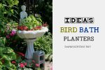 Ideas-Bird-Bath-Planters-H1