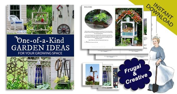 One-of-a-Kind Garden Ideas for Your Growing Space