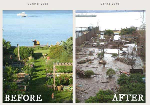 Joan Gussow's Garden Before and After the Flood - see how it is today