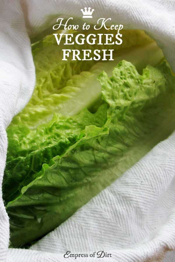 This is a simple trick for keeping vegetables fresh and hydrated while storing them in your refrigerator.