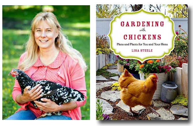 Lisa Steele of Fresh Eggs Daily and her book, Gardening with Chickens