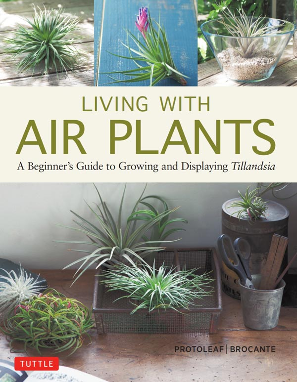 Living With Air Plants book cover