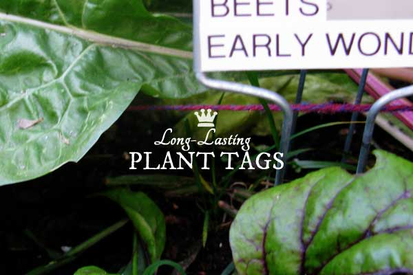 These plant markers are the longest lasting option I have found. They are completely weather-resistant and will last year-round outdoors indefinitely.