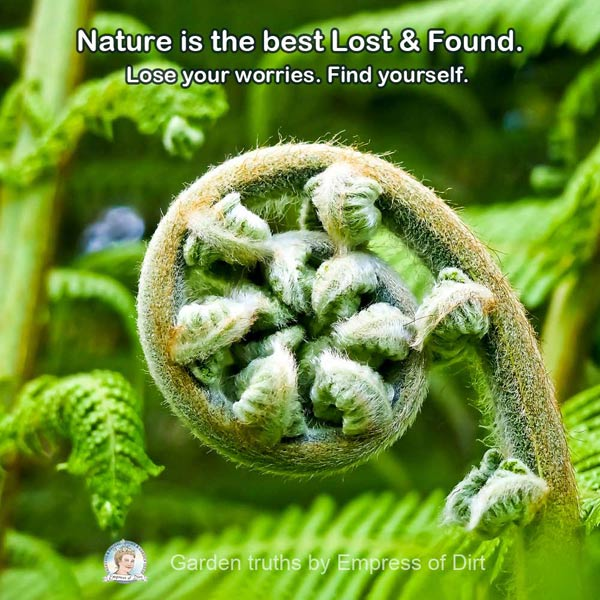 Nature is the best Lost & Found. Lose your worries. Find yourself.