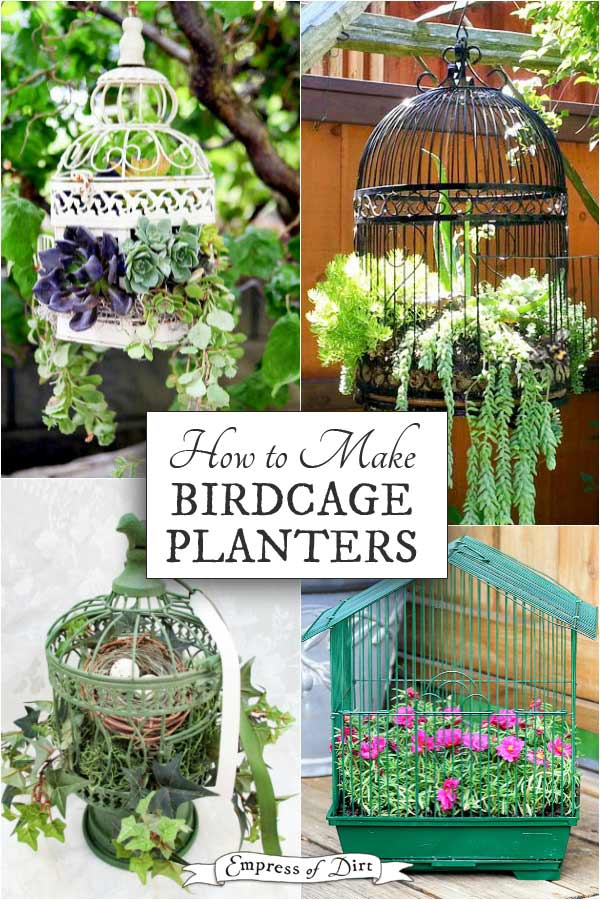 Turn an old birdcage into a beautiful planter.