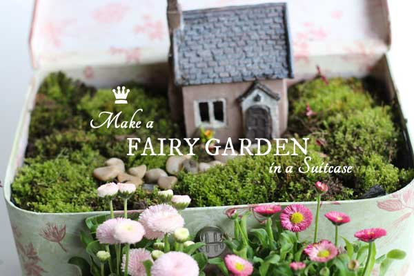 Fairy gardens become magical when you choose quirky and unusual containers like this vintage suitcase.