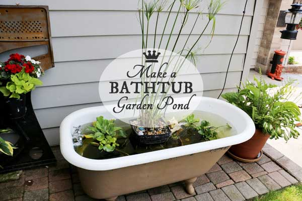 Turn an old claw foot bathtub into a fabulour little container garden pond with this free tutorial.