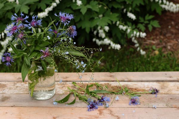 Keep mason jars handy while tidying up the garden and keep any flower clippings for display.