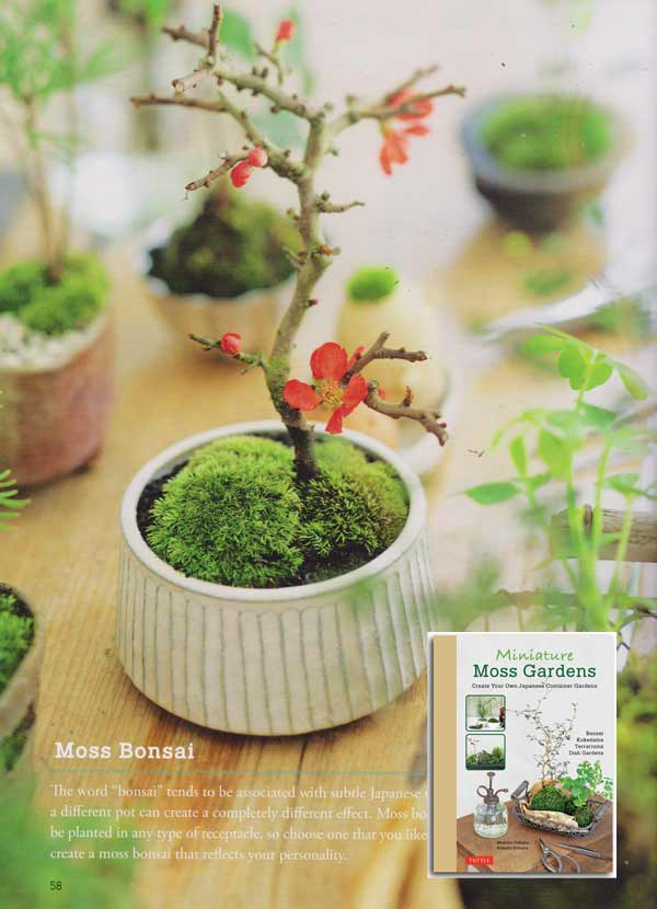 How to make a moss bonsai from the book, Miniature Moss Gardens