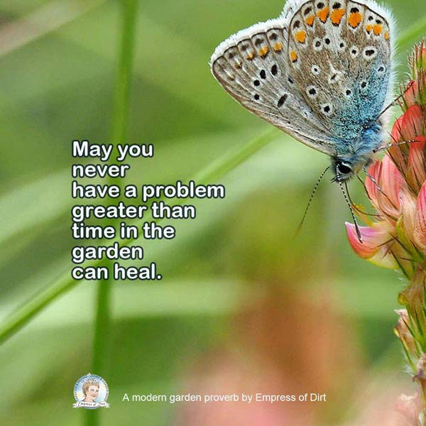 May you never have a problem greater than time in the garden can heal.