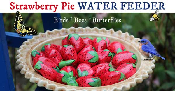 Strawberry Pie Water Feeder for Gardens