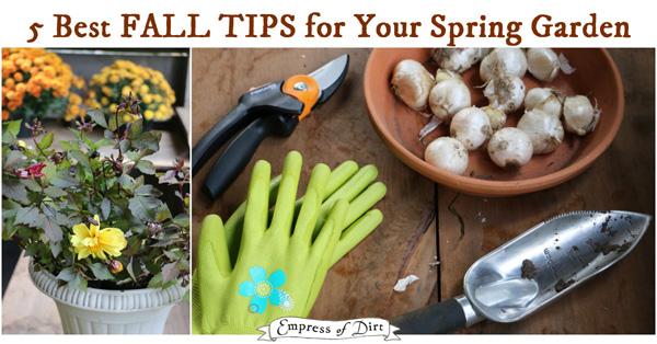 Fall Tips for Your Spring Garden