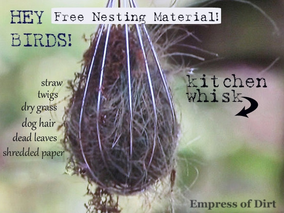 A kitchen whisk filled with nesting materials for birds.