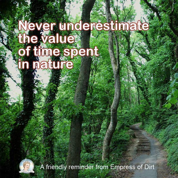 Never underestimate the value of time spent in nature.