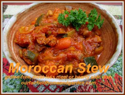 Moroccan stew | 12 Vegetarian Soup Recipes for delicious snacks and meals