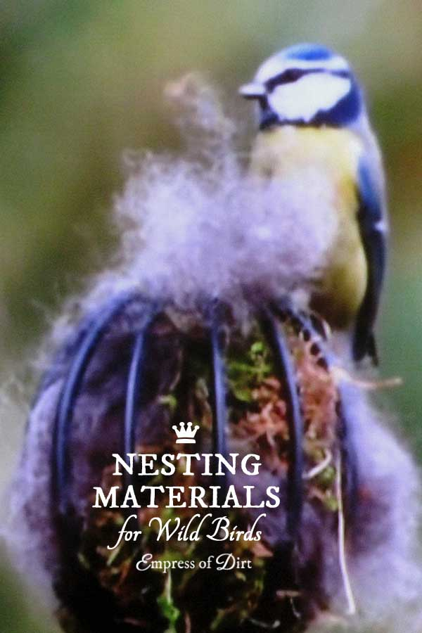 If you wish to put out nesting materials for wild birds, do your homework first and be certain that they are indeed safe and beneficial for the birds.