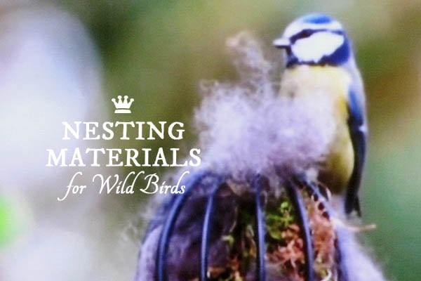 Offer Nesting Materials For Birds