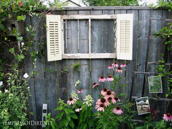 Old wood-framed windows have so many uses in the garden. Here we've hung one on the fence and added shutters for a quirky faux-window effect.