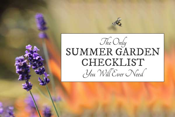 The Only Summer Garden Checklist You'll Ever Need