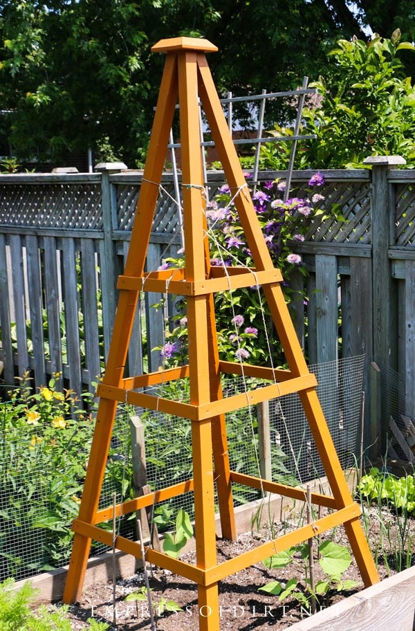 Orange wood garden obelisk.