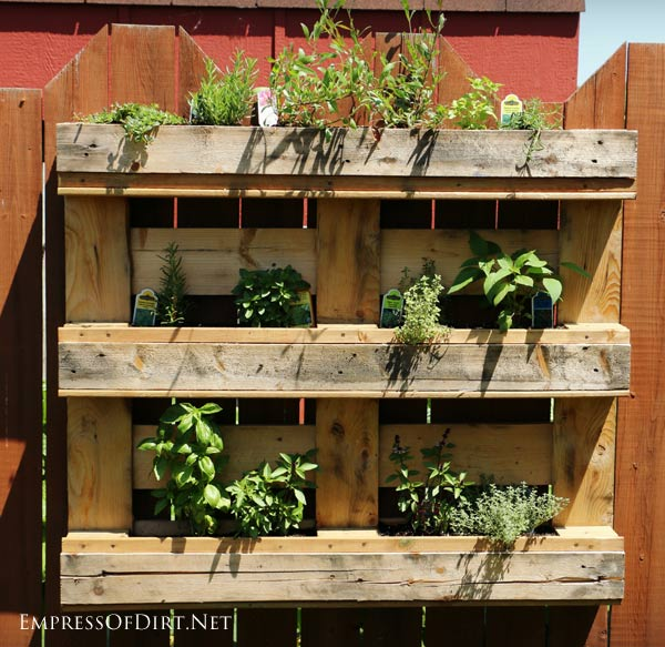 Pallet herb garden grow a herb garden on your garden fence
