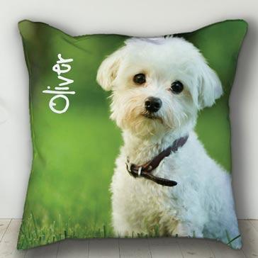 Custom pet portrait pillow with white dog