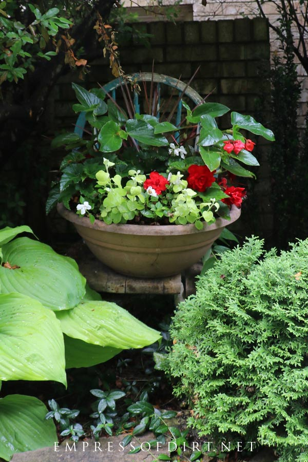 Placing a planter on an old chair is a great way to make the flowers stand out.