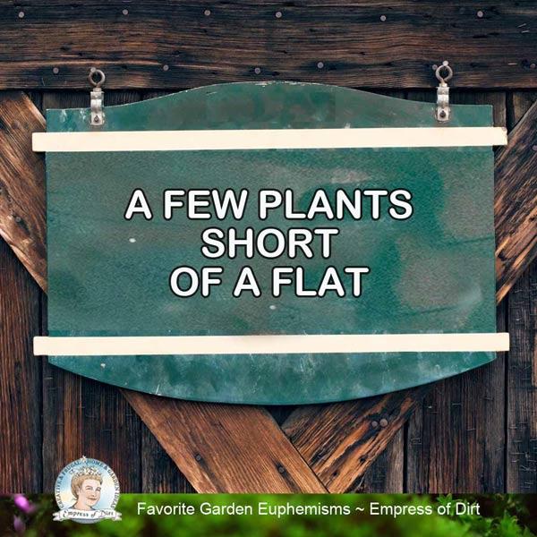A few plants short of a flat.
