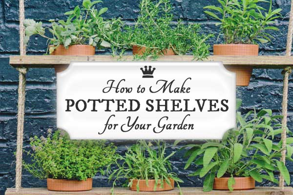 How to Make Potted Plant Shelves