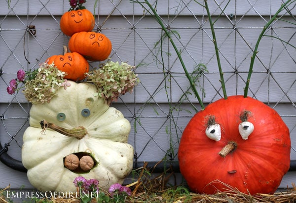 DIY no-carving required jack-o-lantern pumpkins