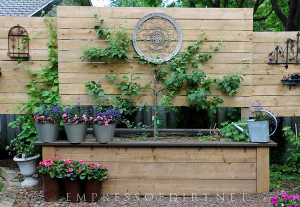 Build a raised garden bed with built-in privacy wall.