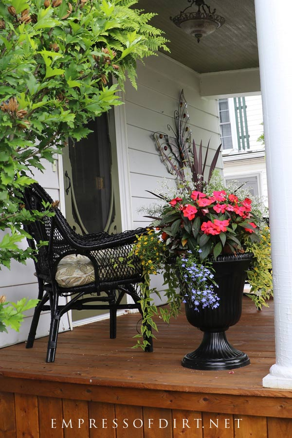 Black urn filled with a beautiful variety of flowering annuals, vines, and foliage plants.