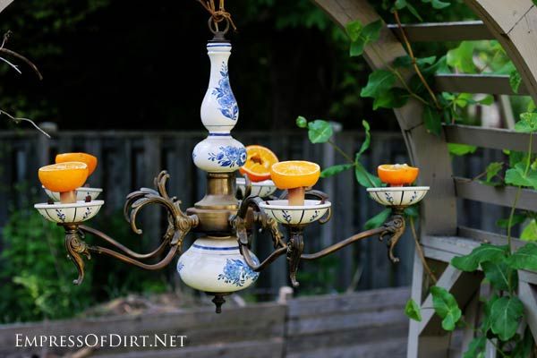 An old chandelier makes a perfect feeder for wild birds. Add oranges for the orioles, bees, and butterflies!