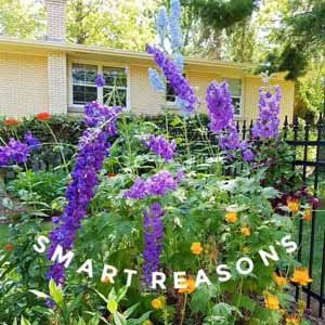 Smart Reasons to Start Plants from Seed