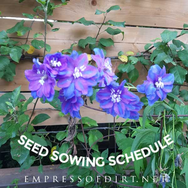 It's just a photo of Printable Seed Starting Chart intended for science project