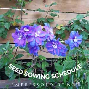 Simple Indoor Seed Starting Schedule   Free Printable
