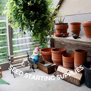 Best Low-Cost Seed Starting Supplies